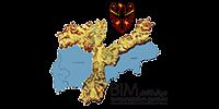 BIM Logo BIM 6cm